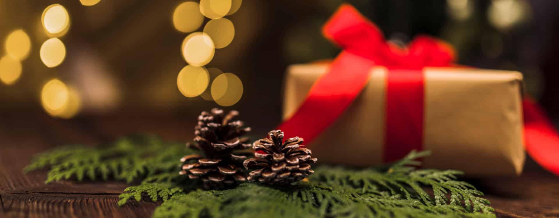 Коледни празници 2021